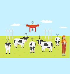 woman farmer with tablet on a modern dairy farm vector image