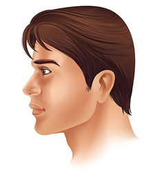 A side view of a mans face vector