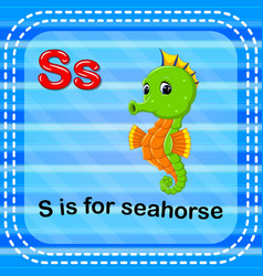 Flashcard letter s is for seahorse vector