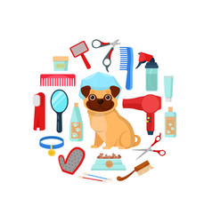Grooming tools and dog vector