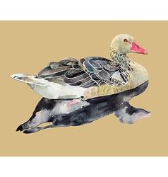 hand draw watercolor bird duck vector image