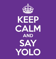 keep calm and say YOLO poster quote vector image