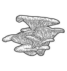 Mushroom plants sketch scratch board imitation vector