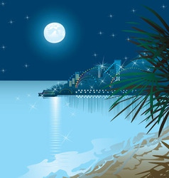 Nigth beach vector