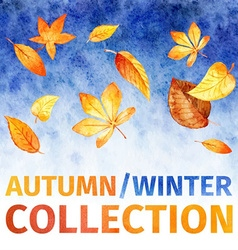 Watercolor leaves autumn winter collection vector