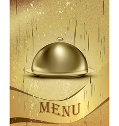 Old Catering Tray Background vector image
