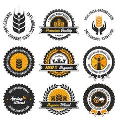 organic wheat label set vector image
