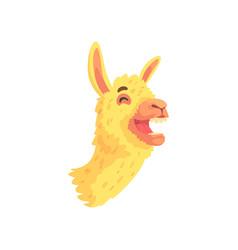 funny laughing llama character cute alpaca animal vector image