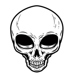 alien skull isolated on white background design vector image
