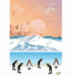 Colony penguins at dawn vector