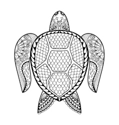 hand drawn sea turtle for adult coloring pages vector image