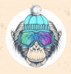 Hipster animal monkey in winter hat vector