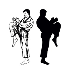 karateVer2 vector image vector image