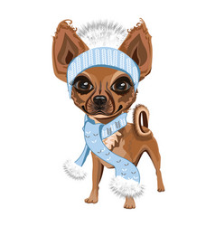 little doggy in hat vector image