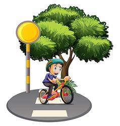 A boy biking at the road vector