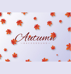 autumn background with leaves grey bg vector image