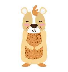 Colorful cute and smile bear wild animal vector