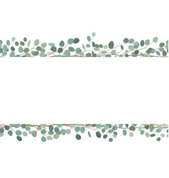 Elegant seamless borders of eucalyptus branches vector