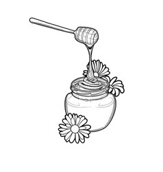 graphic honey flowing from dipper to the vector image