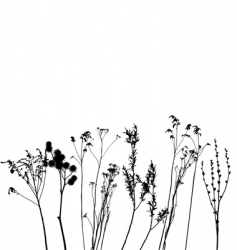 Grass collection for designers vector