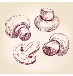 Mushroom set hand drawn llustration vector