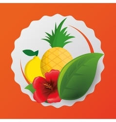 Pineapple lemon flower and leaf design vector