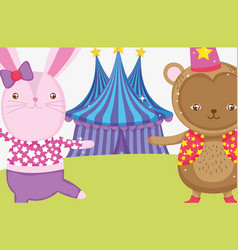 rabbit and monkey costume in the circus big top vector image