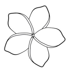 Silhouette flower with oval shaped petals vector