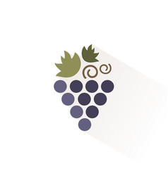 bunch grapes icon with shadow flat vector image