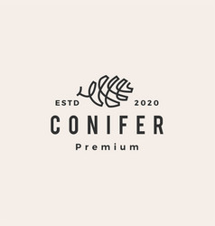 conifer hipster vintage logo icon vector image