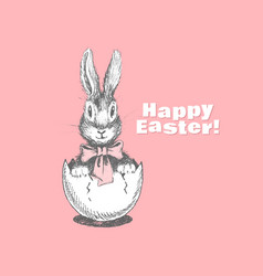 funny easter bunny vector image