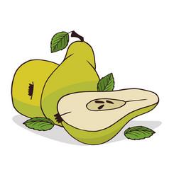 Isolate ripe pear fruit vector