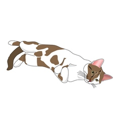 Relaxing cat vector image