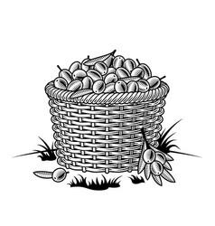 retro basket olives black and white vector image