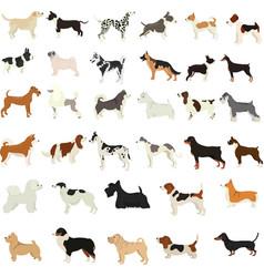 Set flat cute cartoon dogs popular breeds vector