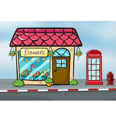 A flower shop and a callbox vector image vector image
