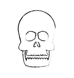 human skull anatomy health front sketch vector image vector image