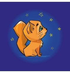 Cute red cat looking at the night sky and stars vector image