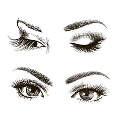 Female eye set vector