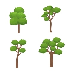 trees forest nature icon vector image