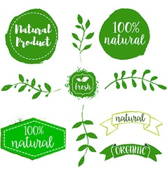 Set of natural product labels Hand drawn design vector image