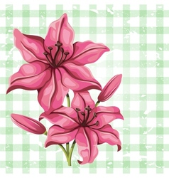 Detailed lily flower in vintage style vector image vector image