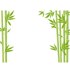 bamboo background asian fresh green bamboo stalks vector image