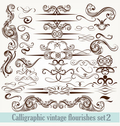 collection of calligraphic decorative flourishes vector image
