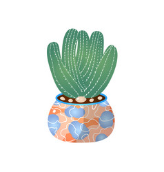 green cactus pot in home for indoor room vector image