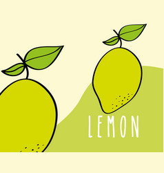 lemon fruit tropical fresh natural on colored vector image