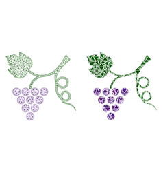 Polygonal wire frame mesh grape plant and mosaic vector