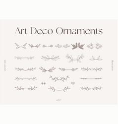 Set floral elements decorative branches vector
