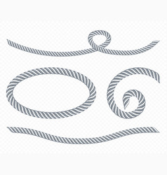 silver ropes frame twisted twines vector image