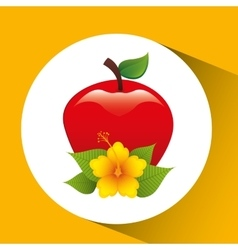 Tasty red apple and flower leaf vector